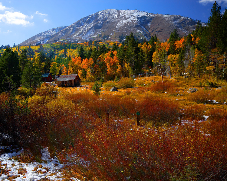 Rustic Cabin, Fall Colors Carson Pass California