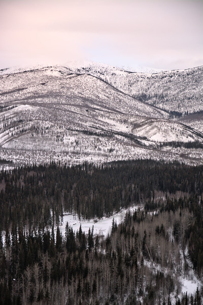 Chena River Valley