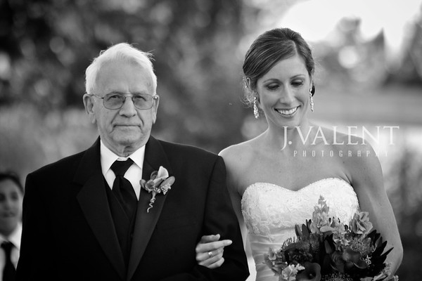 2010 Wedding - Portfolio, tevak