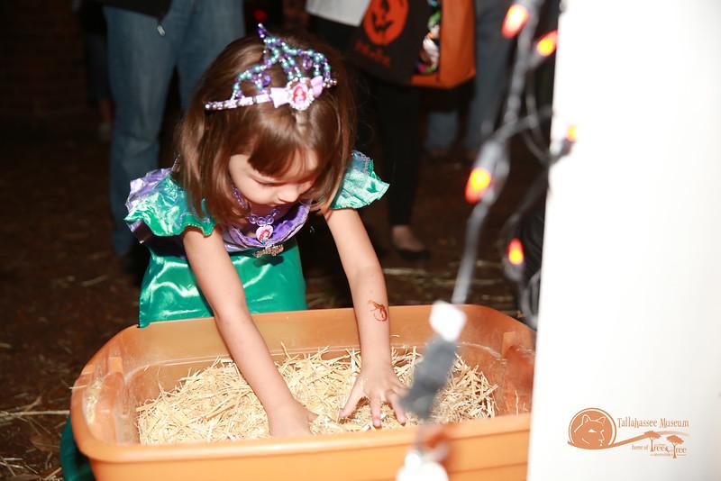 Halloween_at_Tallahassee_Museum-0057jpg.jpg