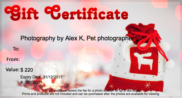 christmas gift certificate 1.png