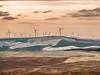Palouse Prairie Windmills 2