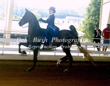 CLASS 3 WALK TROT EQUITATION 10 YR & UNDER -- RIBBONS CAN BE MOVED