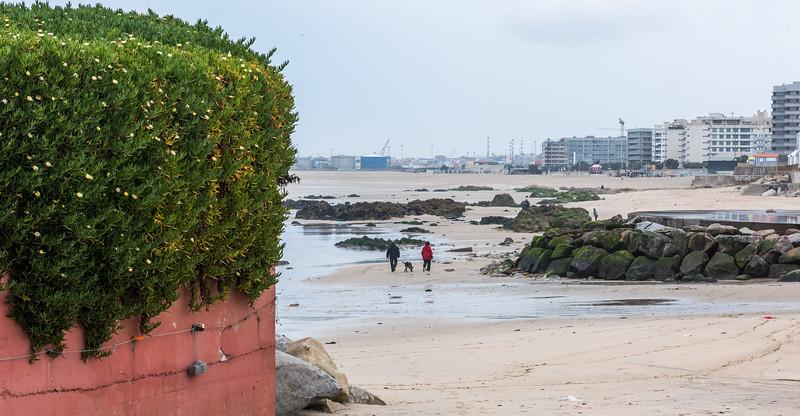 Porto 61.jpg