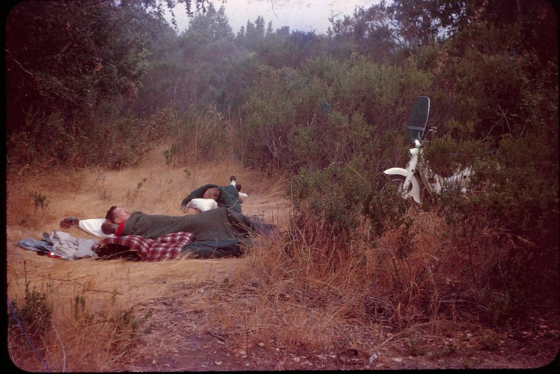 1963 09 Phil and Dave Santa Lucia forest.jpg