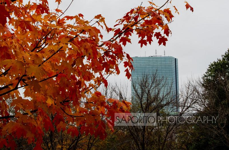 Hancock in Fall