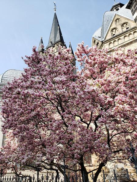 Aachen - Dome.jpg