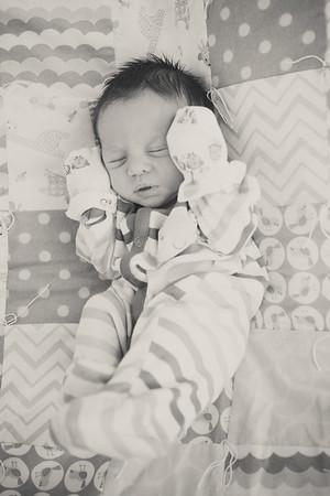 Coleman newborn pics