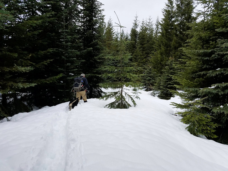 The cross country route we took - we were sinking about a foot in the snow