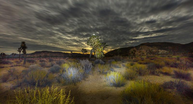 Desert Colors copy.jpg