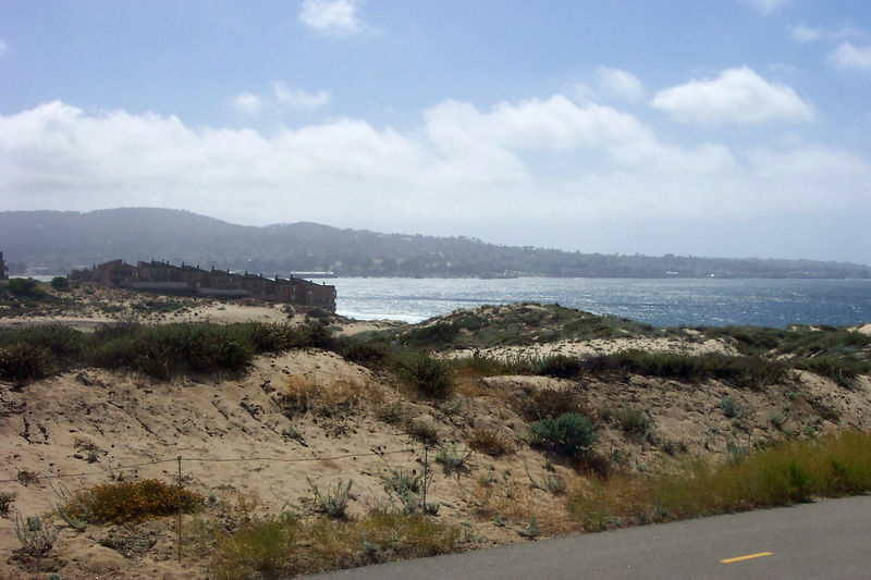 beach along the bikepath.jpg