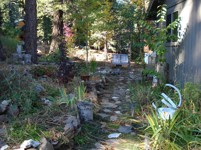 Side Yard 10-20-2010