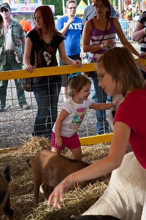 Hancock County Fair 2012