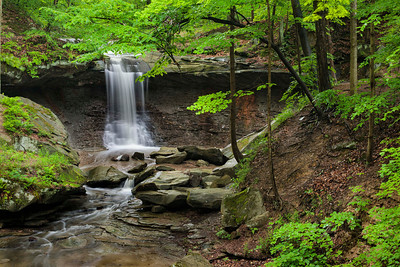 Blue Hen Falls - June 10, 2013