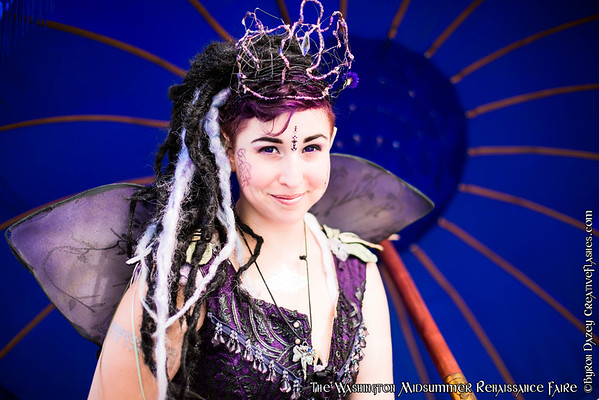 The Fairie Guild