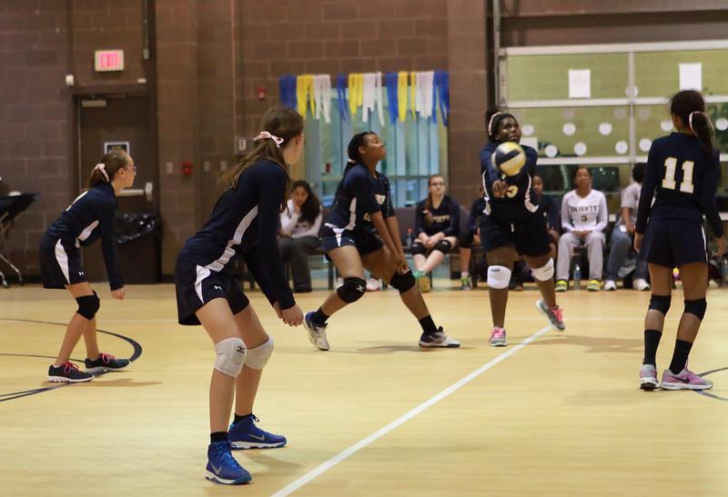 VCA-Volleyball-25.jpg