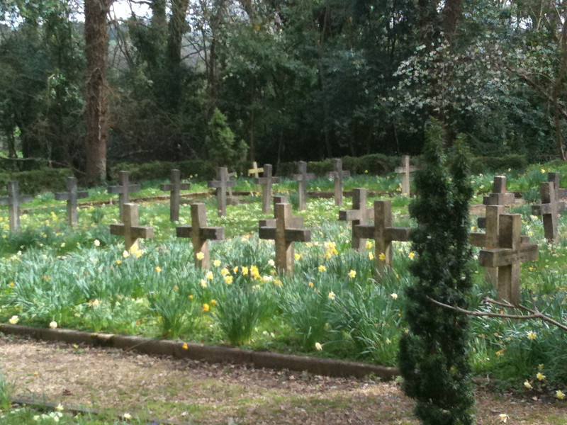Abbey Graves