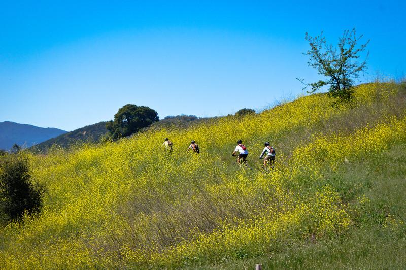 20120421133-Malibu Creek State Park, Hike Bike Run Hoof.jpg