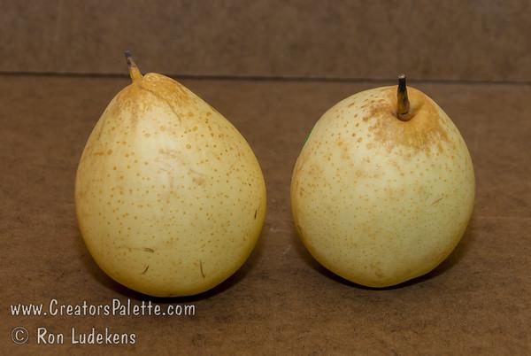 Ya Li Pear (Pyrus pyrifolia sp.)