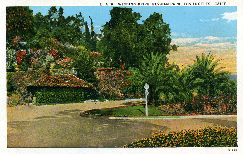 Winding Drive in Elysian Park