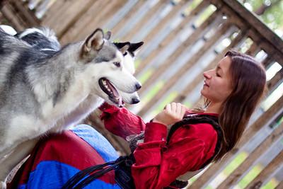 Husky&malamute&people