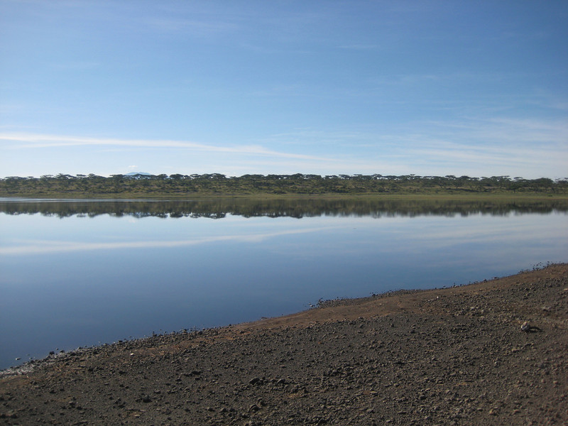 Ndutu watering hole 2.JPG