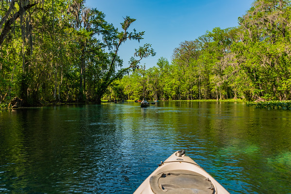 Silver Springs State Park, Silver Springs, Florida