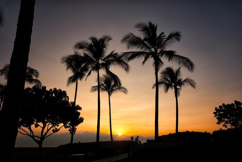 2015-02Feb01-Hawaii-36-Edit-Edit-Edit-Edit.jpg