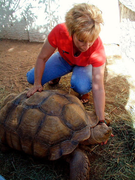 Darlene with one of her tortoises