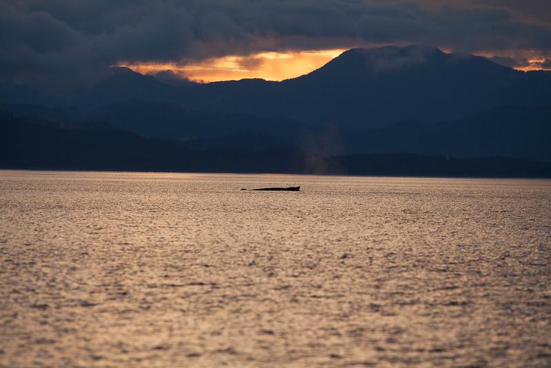 Alaska-151.jpg