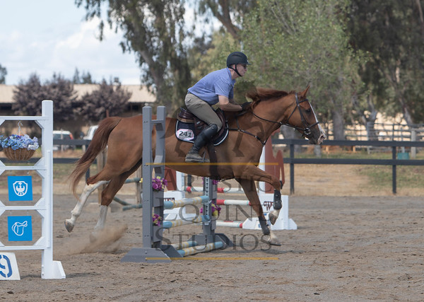 Rider 241