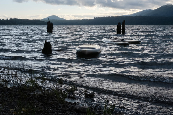 Lake Quinault, the Queets and Hoh Rainforests