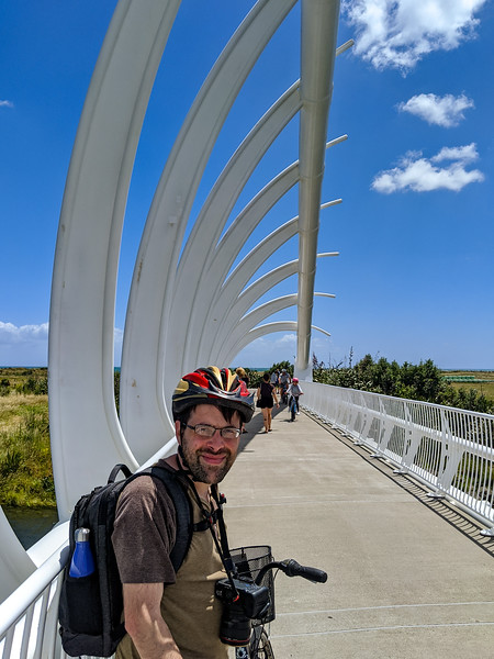 Ted on the Te Rewa Rewa Bridge