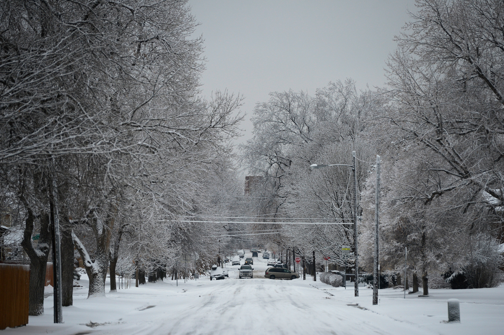 . Snow covered Warren Ave near Madison St. in Southeast Denver Friday morning,  January 31, 2014. (Photo By Andy Cross / The Denver Post)