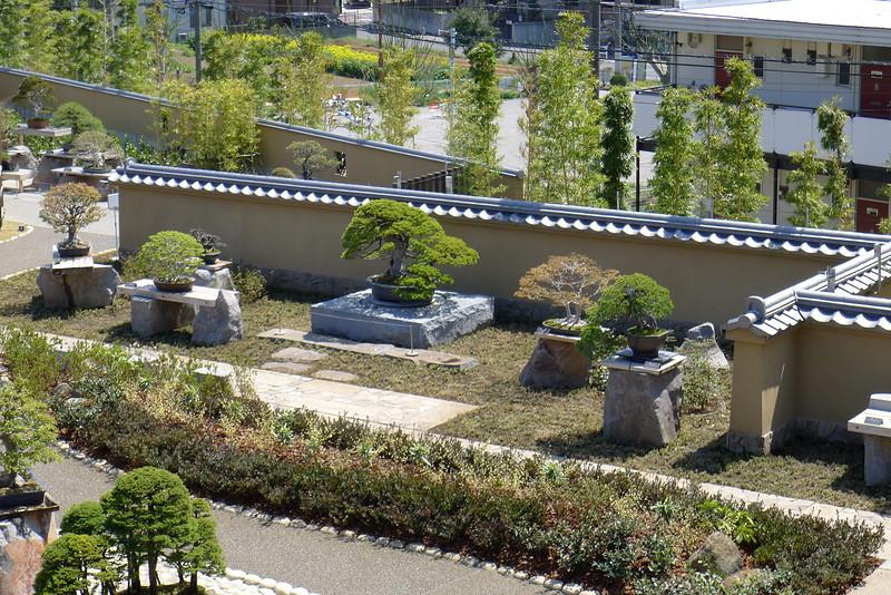 21-Japan2011_0896.JPG
