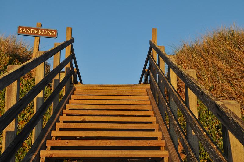 Paharo_2-13-15_Stairs-5076.jpg