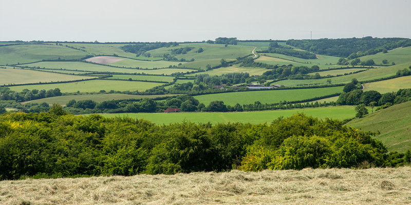 Sydling Valley and the Dorset Downs