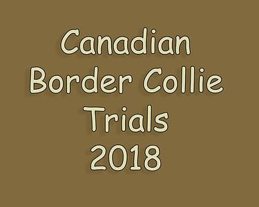 Canadian Border Collie Trials 2018