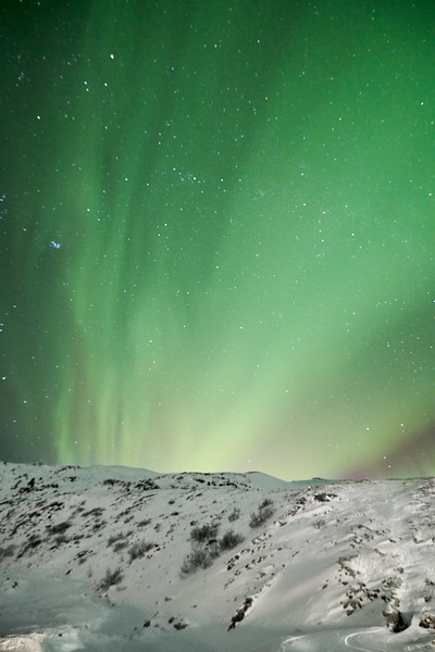 IcelandSelectsD85_1181.jpg