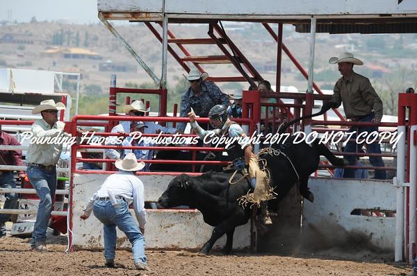 Sierra County 6-23-13 Bulls