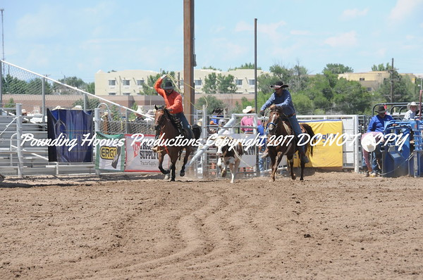 Sr Team Roping
