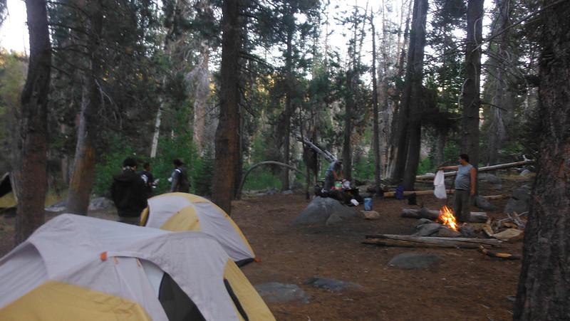 sequoia 046.JPG