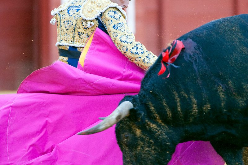 Bullfight action, Real Maestranza bullring, Seville, autonomous community of Andalusia, southern Spain