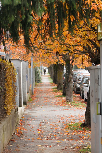 IMG_2609Street Street Klagenfurt.JPG