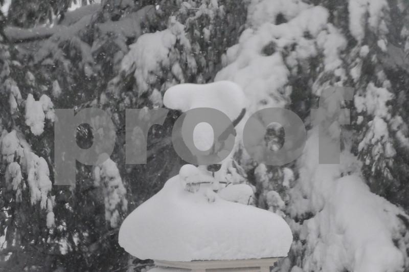 snow strom 001.JPG