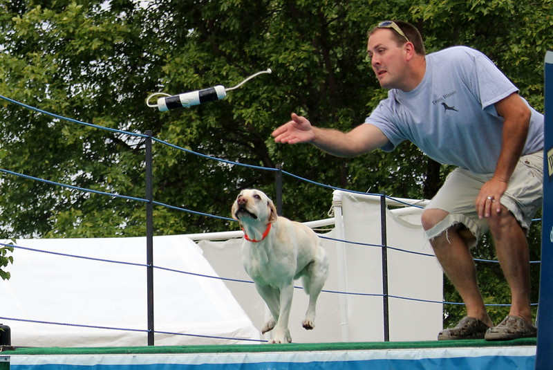 Dock Dogs at Fair-006.JPG
