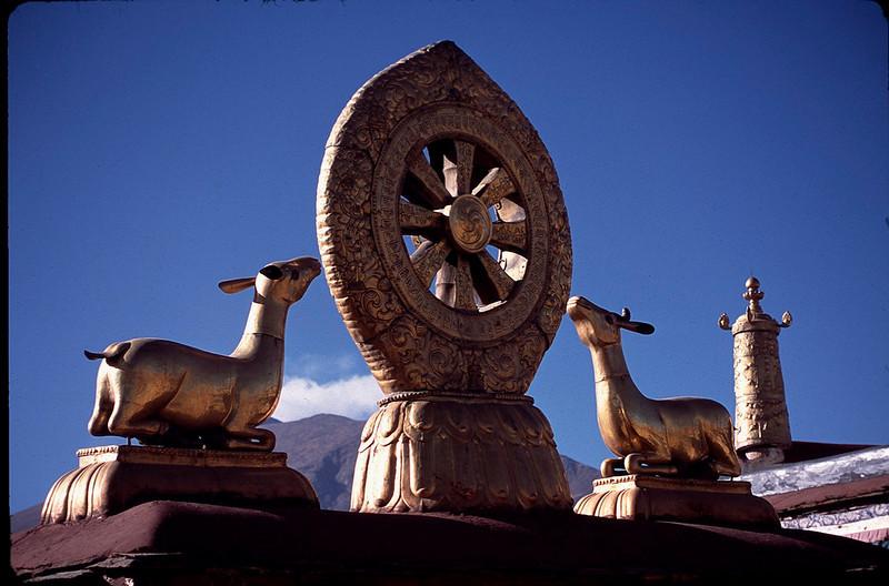 Tibet_Shanghai1_057.jpg