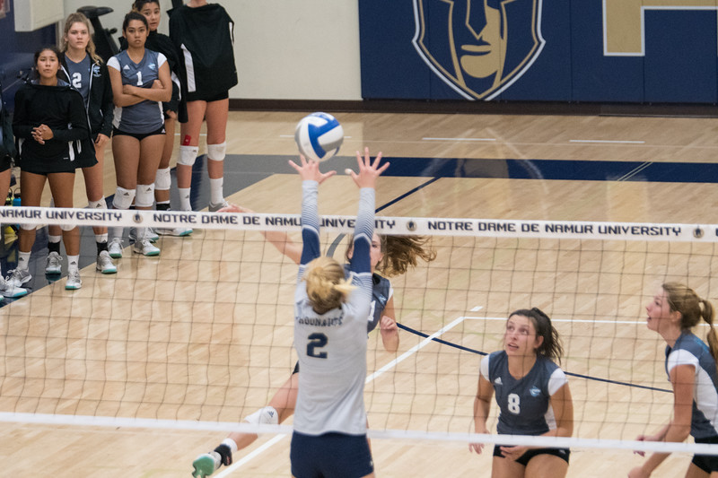 HPU Volleyball-92218.jpg