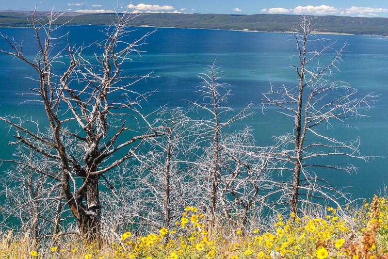 Lake-Butte-1.jpg