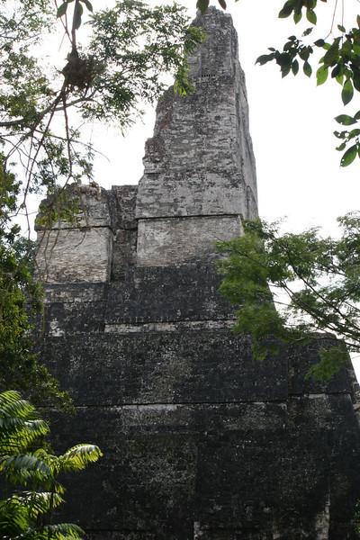 Guatemala Tikal 0 122.JPG